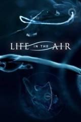 Élet a levegőben