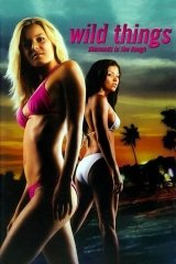 Vad vágyak 3. – színes, amerikai rejtély, bűnűgyi, filmdráma 2005