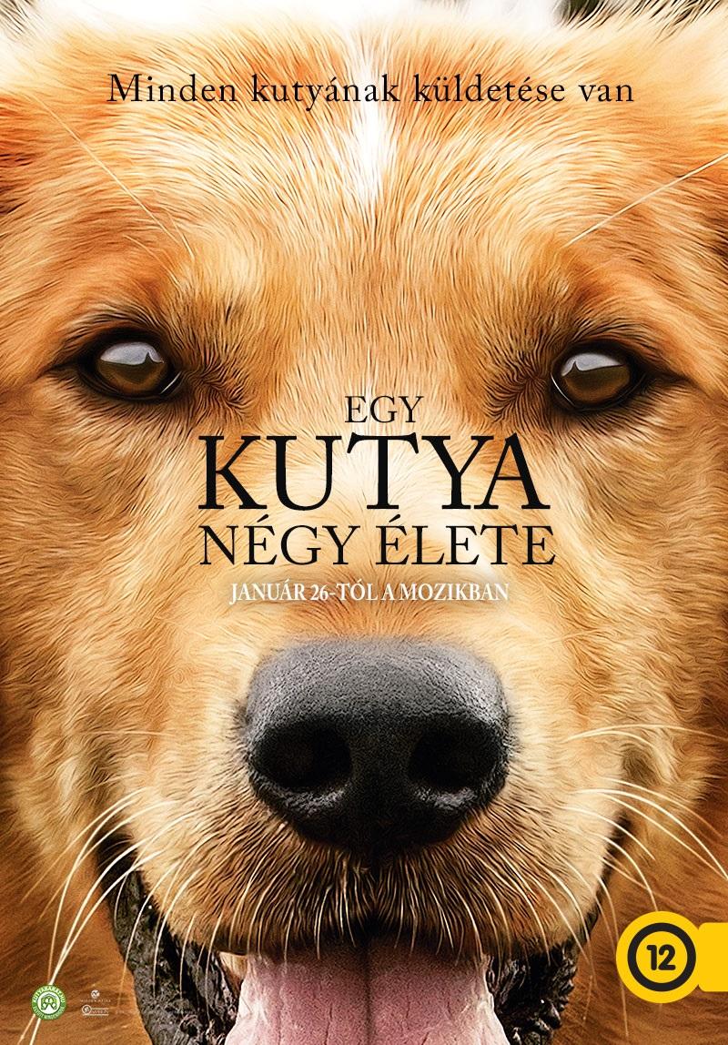 Egy Kutya Negy Elete A Dog S Purpose 2017 Mafab Hu