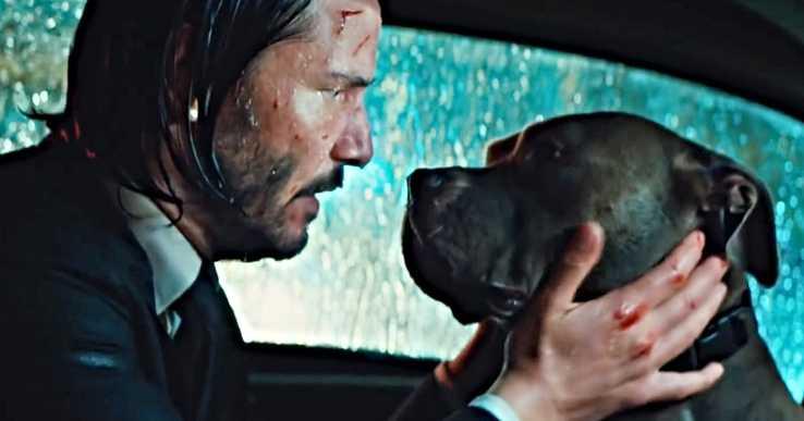 Mindenki nyugodjon meg, a kutya biztonságban van a John Wick 3-ban!