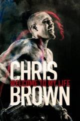 Chris Brown: Welcome to My Life