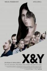 X és Y