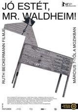 Jó estét, Mr. Waldheim!