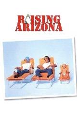 Arizonai ördögfióka