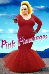Rózsaszín flamingók