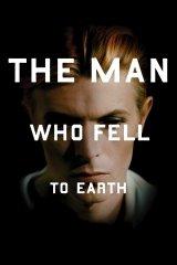 A Földre pottyant férfi