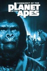 A majmok bolygója IV. - A hódítás