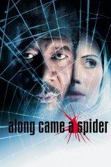 A pók hálójában