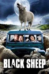 A bárányok harapnak