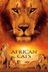 Afrikai macskák - A bátorság birodalma