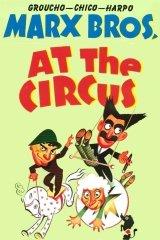 Botrány a cirkuszban