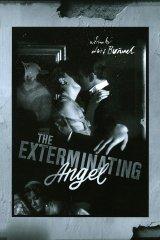 Öldöklő angyal