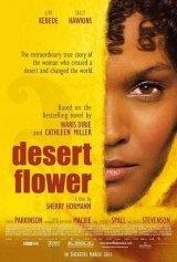 A sivatag virága