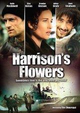 A felejtés virágai