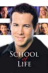 Az élet iskolája