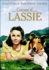 Lassie bátorsága