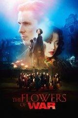 A háború virága