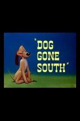 Dog Gone South