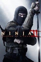Ninja 2: A bosszú árnyéka