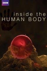 Az emberi test titkai