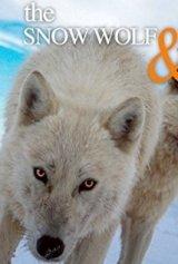 A fehér farkasok földjén