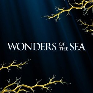 Poster - Wonders of the Sea 3D (2017)